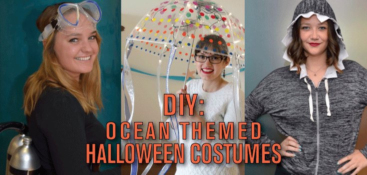 last minute costume ideas for ocean lovers ocean conservancy