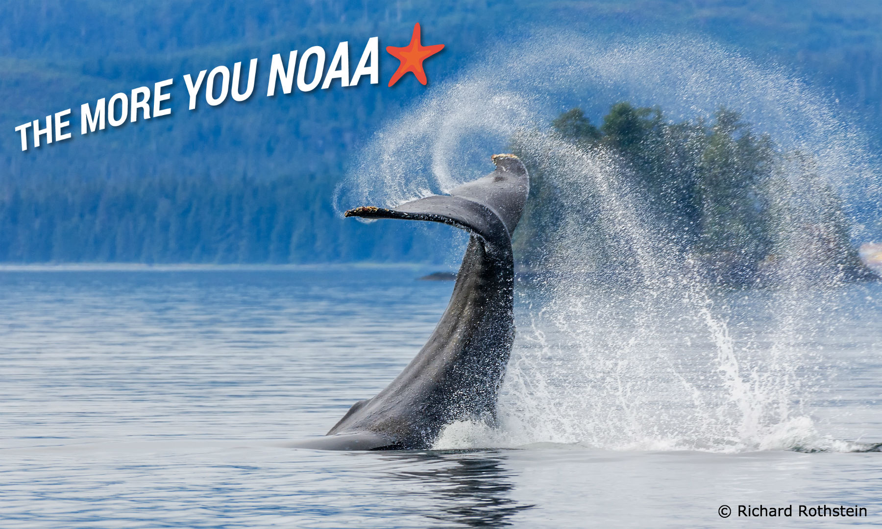 The More You NOAA - Ocean Conservancy