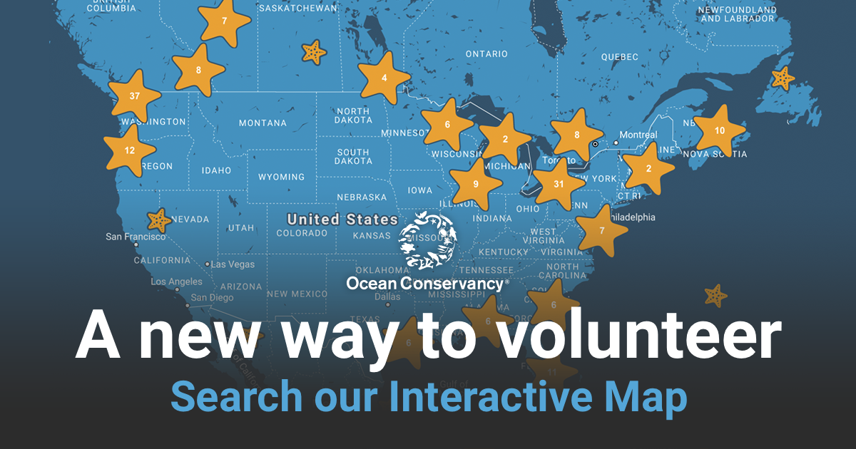 Find a Cleanup with Ocean Conservancy's Interactive Map