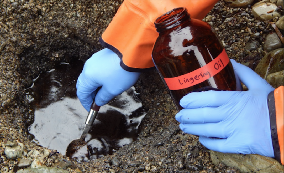 Hard Lessons from a Disastrous Oil Spill
