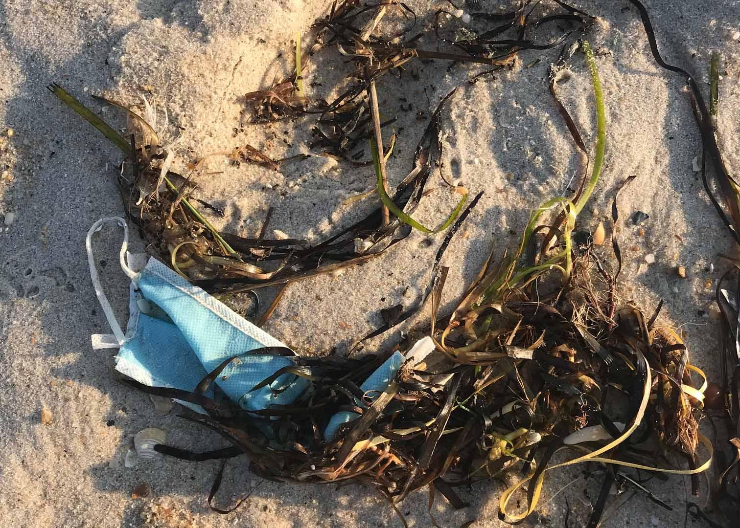 Epidemia de plásticos - conservação do oceano 2